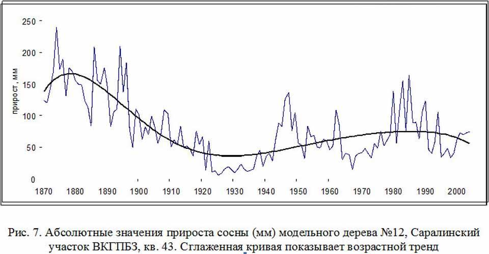 Какой средний возраст деревьев в России?