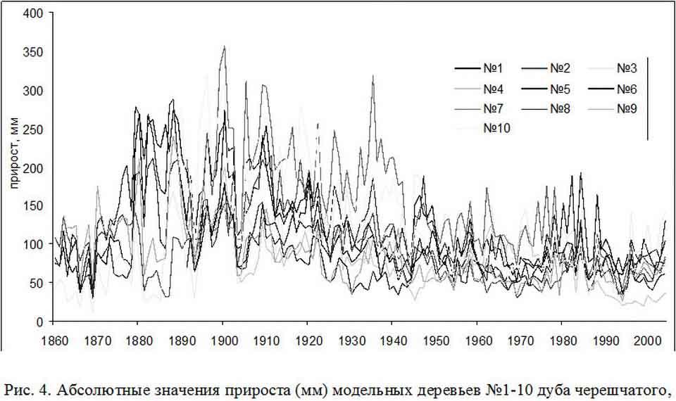 В России нет деревьев старше 200 лет.