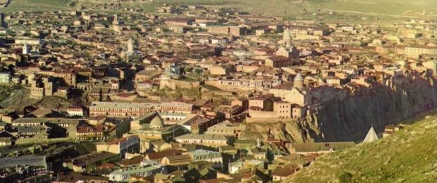 Выжженные леса Кавказа в 19 веке восстанавливали казаки.
