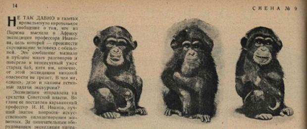 Люди-обезьяны.