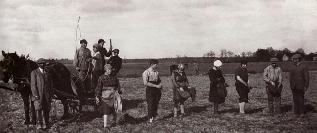 Польские евреи или польские grey?