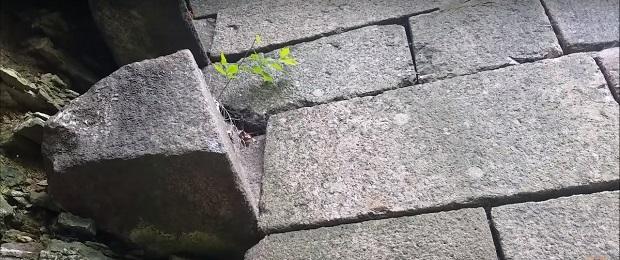 Кто построил Кронштадт. Комментарии к видео. Часть 2.